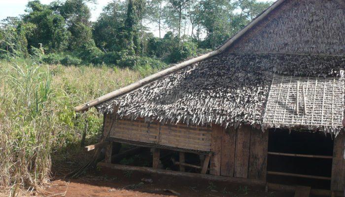 Maison traditionnelle dans la région de Banlung