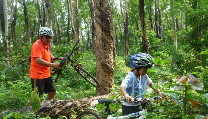 VTT en foret au Cambodge